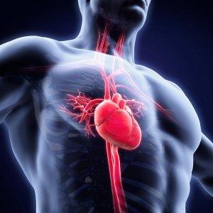Reagenzien für metabolische Risikofaktoren