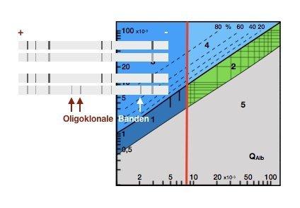 CSF-Serum-Quotienten Qualitätskontrollen